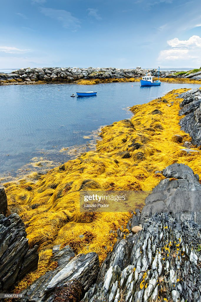 Blue boats anchored in Blue Rocks : Stock Photo