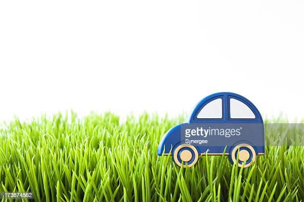Blue car on grass