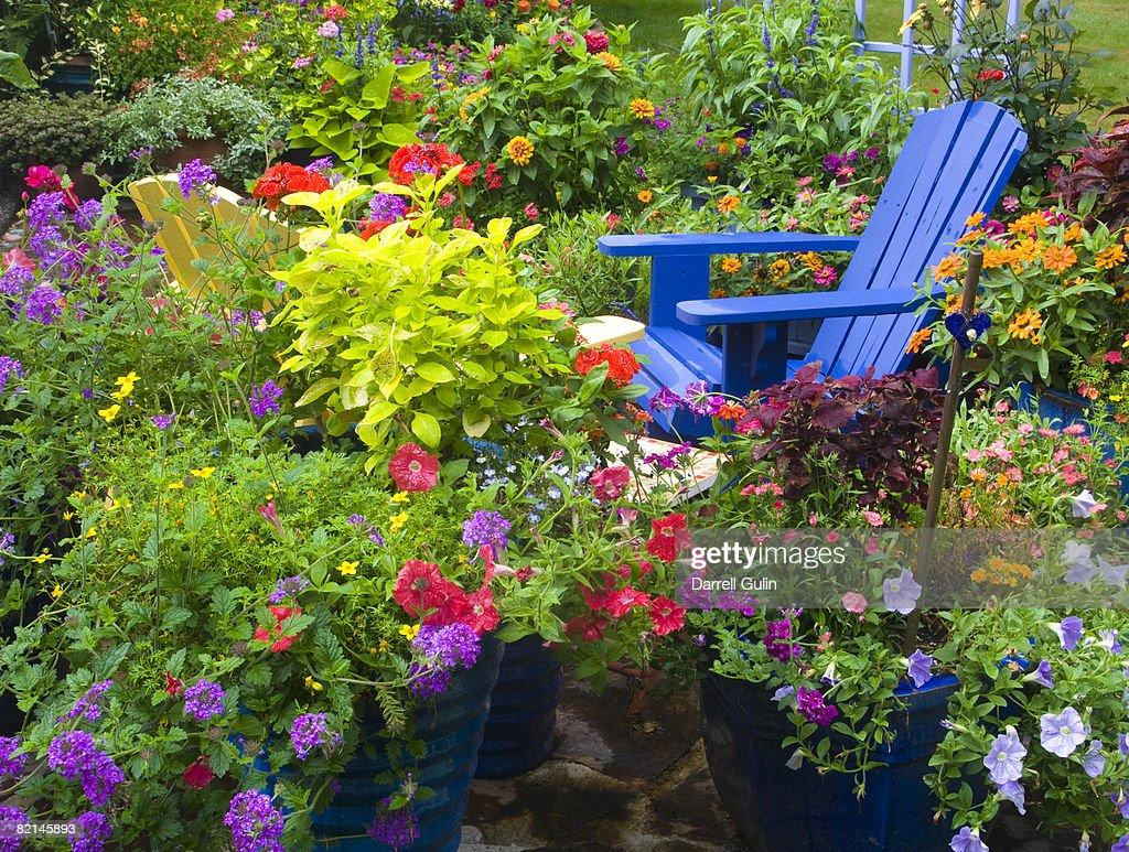 Blue Chair field flowers
