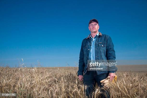 Blue Collar Farmer in a Farm Wheat Field
