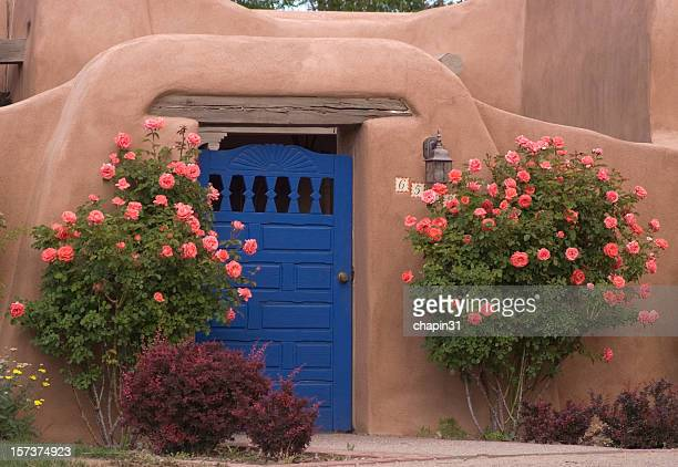 Blue Door & Roses