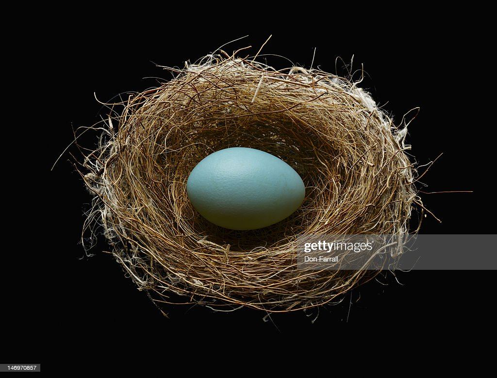 Blue egg in a nest.