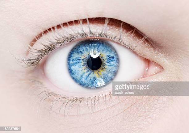 macro de olho azul