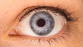 A blue female right eye.