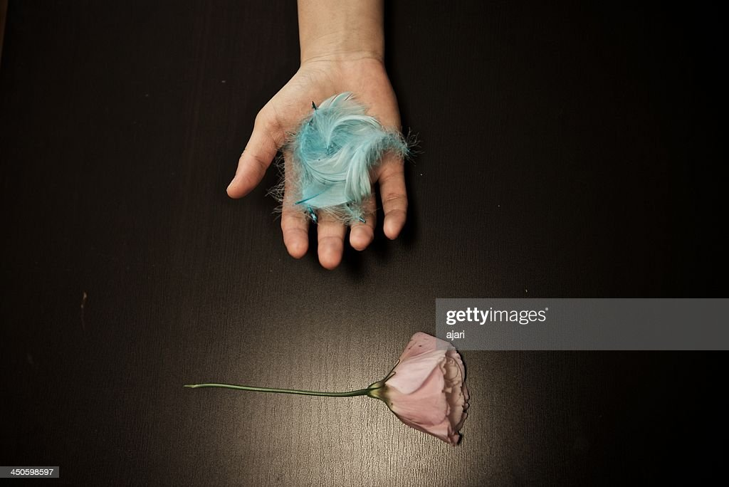 Blue feathers and flower : Stock Photo