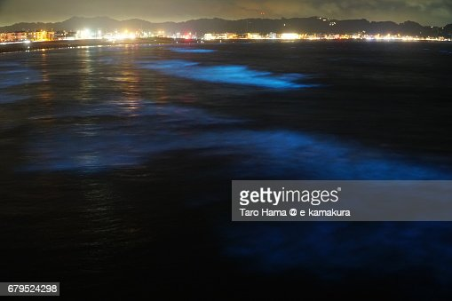 Blue light bioluminescence from Noctiluca scintillans on the night beach in Kamakura, Japan : ストックフォト