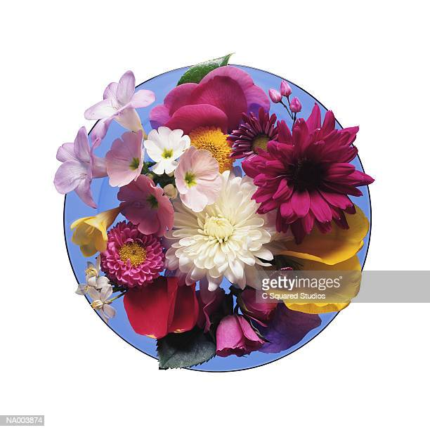Blue Plate of Flowers
