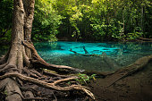 Blue pool in a tropical rainforest