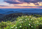 Sunset in the blue ridge mountain range of North Carolina. Overlooking the mountain range of Pisgah national forest in the Great Smokey Mountains near Asheville North Carolina
