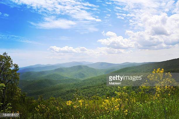 Blue Ridge Mountains, Appalachians, Virginia