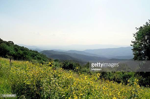 Blue Ridge Mountains, Appalachians, Virginia