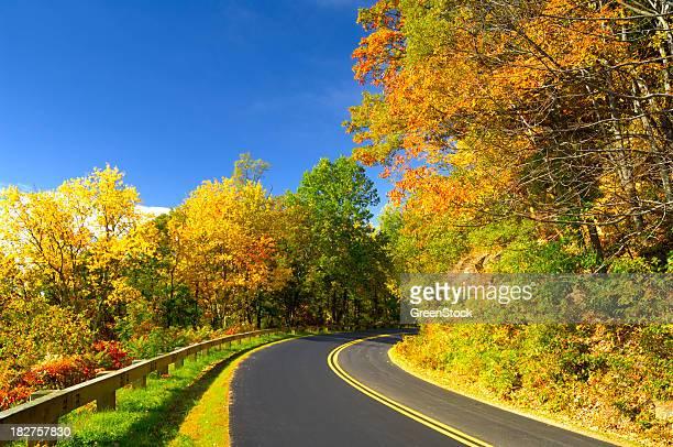 ブルーリッジパークウェイ国立公園で秋の素晴らしい眺望