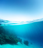 Split shot of the coral reef underwater and sea surface with waves