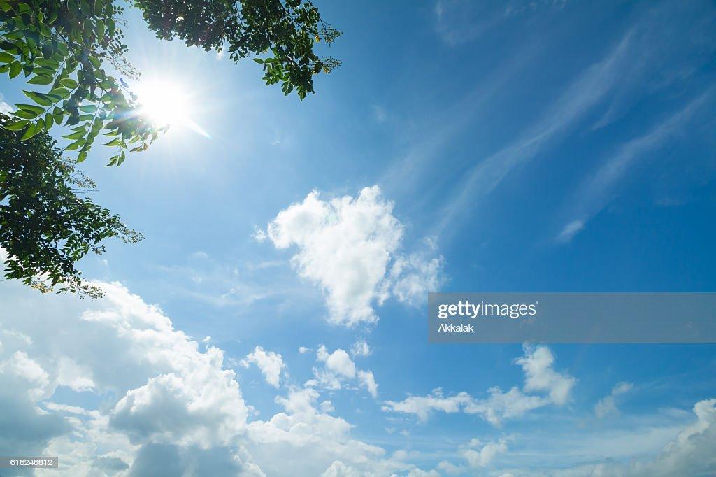 Cielo azul y nubes  : Foto de stock