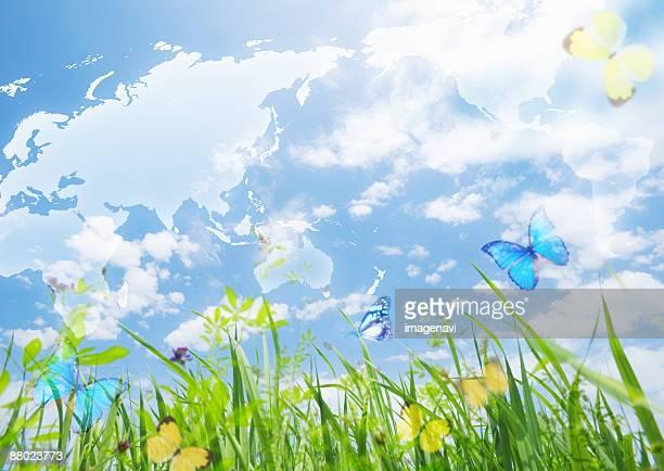 Blue sky and glassland