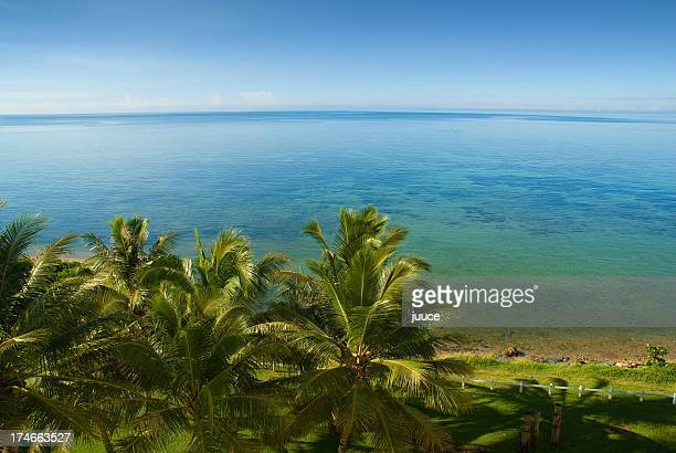 blue sky and palm trees at Noumea Bay