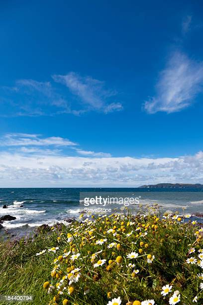Blue sky and sea English coastline Devon Cornwall UK