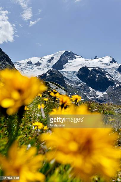 Blue sky over suisse alpes at Sustenpass