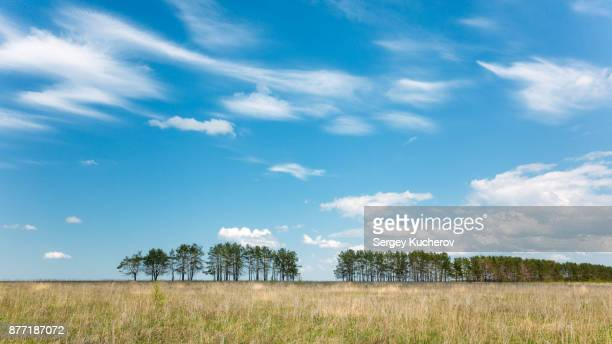 Blue sky over the summer field in Chuvashia