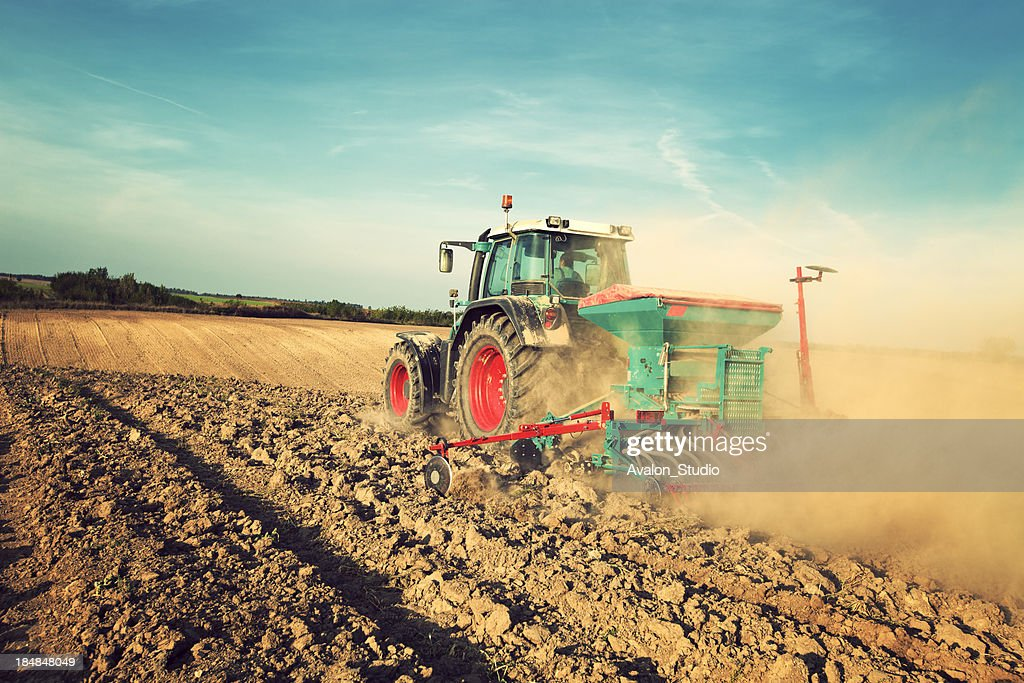Blue tractor sowing in field