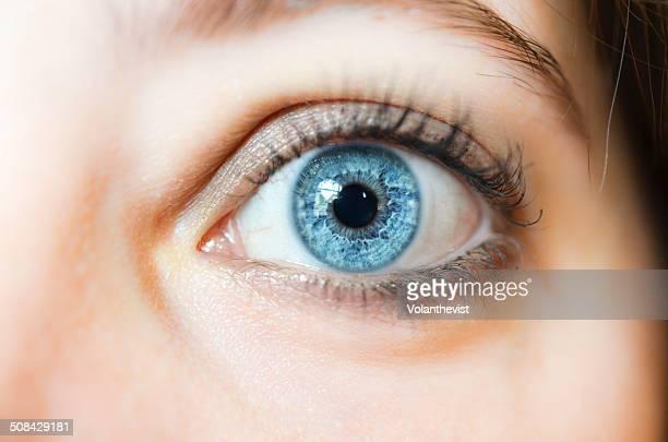 Blue woman eye wide open. Closeup