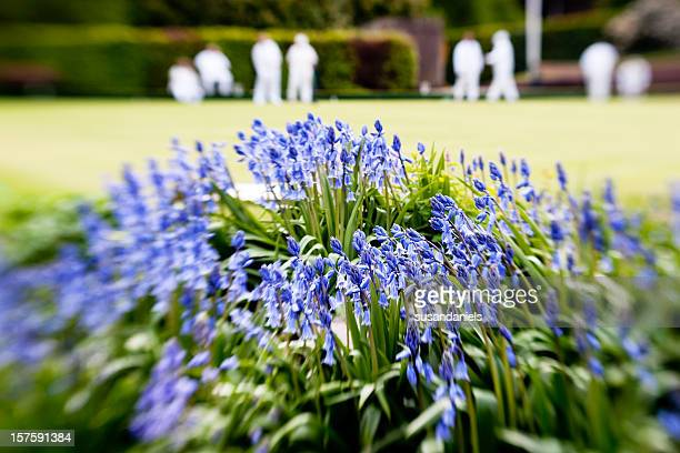bluebells and lawn bowls