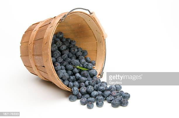 Blueberries flowing from an overturned basket