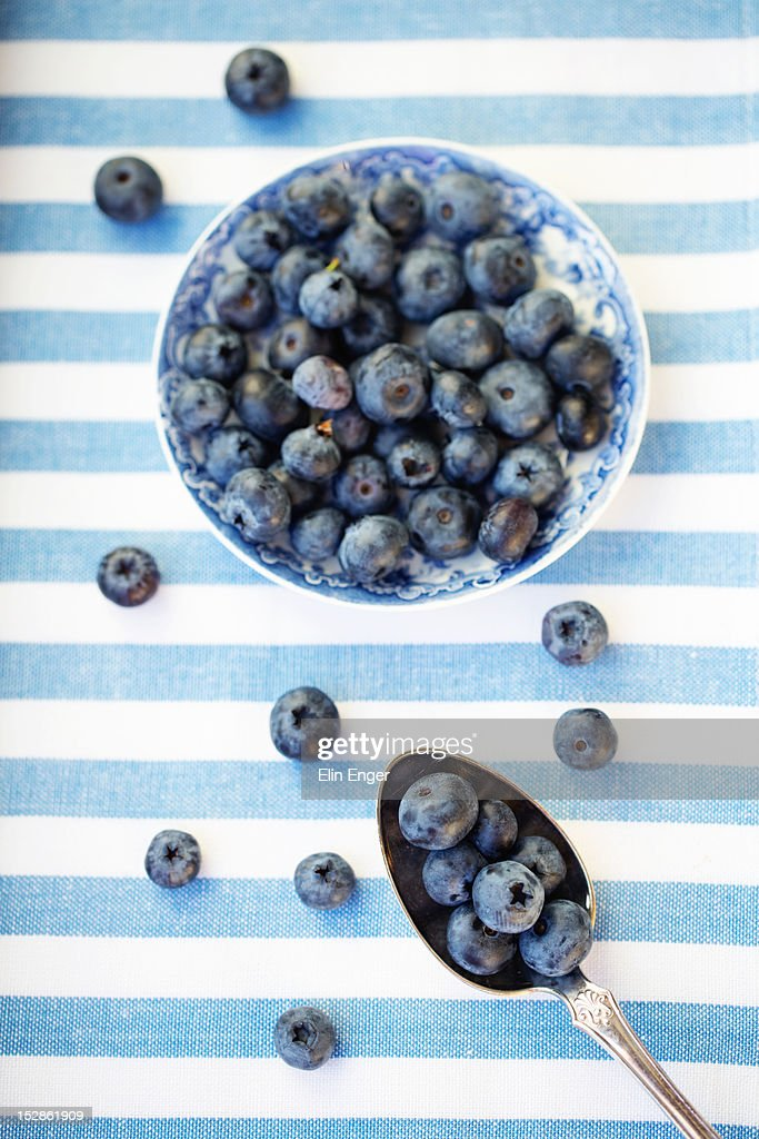 Blueberries : Stock Photo