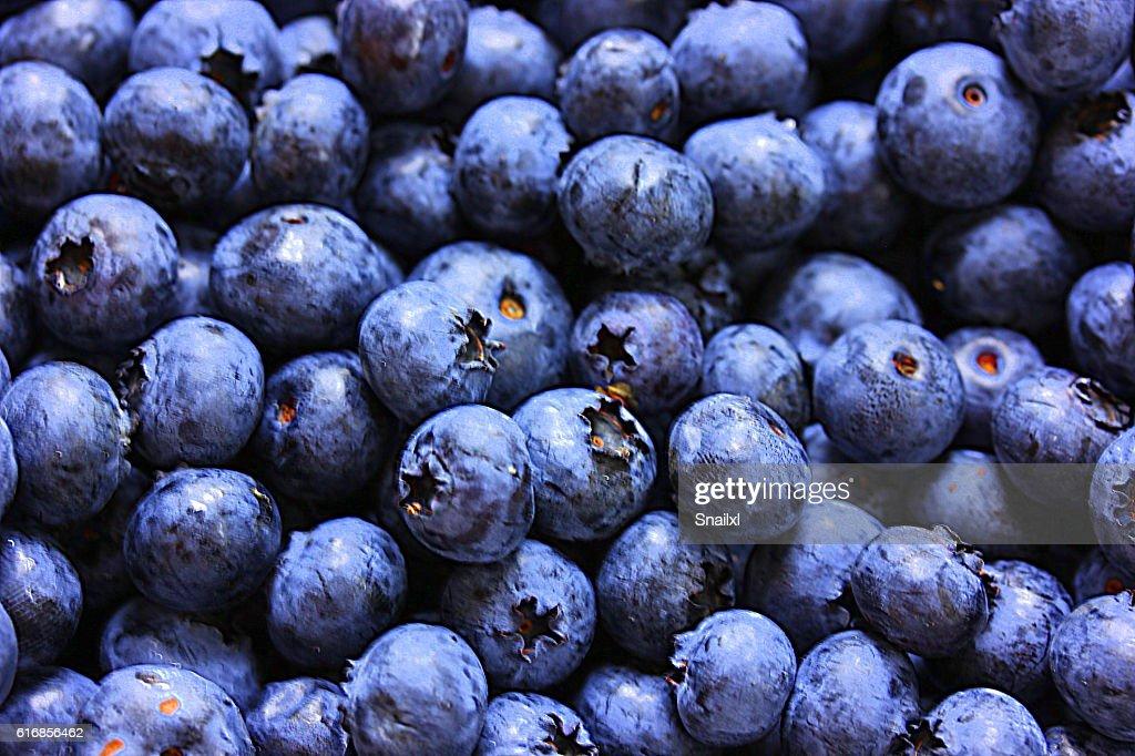 Blueberries : Stock Photo