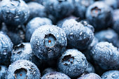 Batch of blueberries covered with water droplets