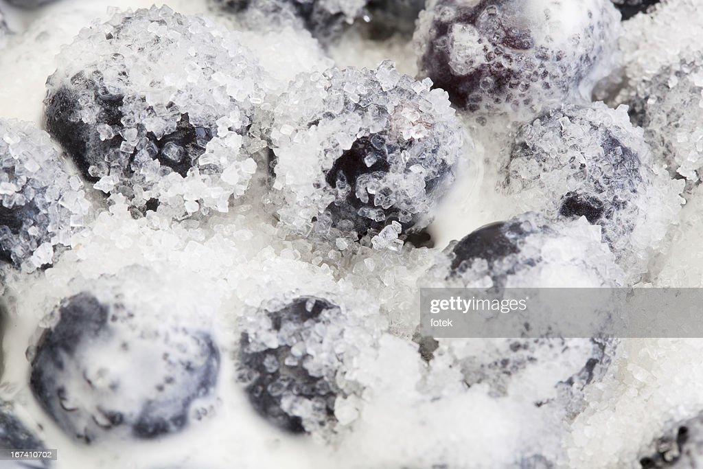 Blueberries whipped cream and sugar : Bildbanksbilder