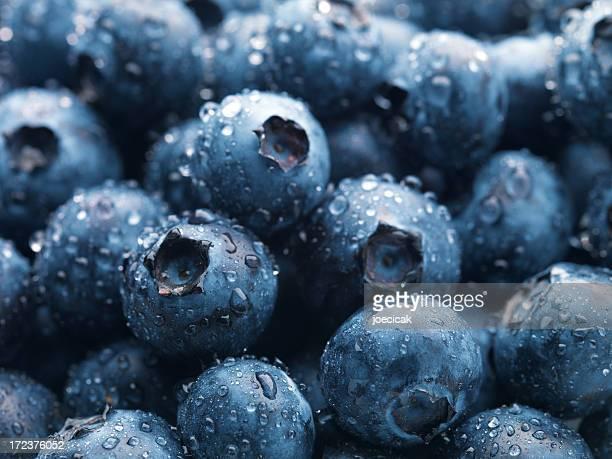 Blueberries XXL