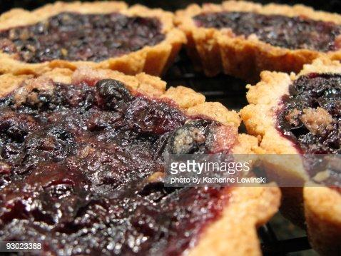 Blueberry Tarts : Stock Photo
