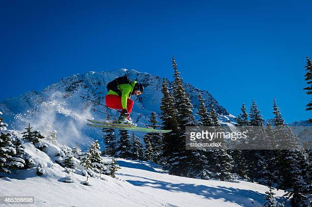 Bluebird Skiing