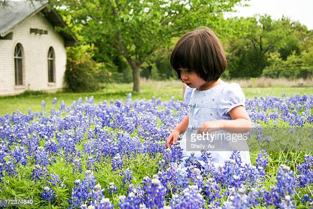 Bluebonnet Walk