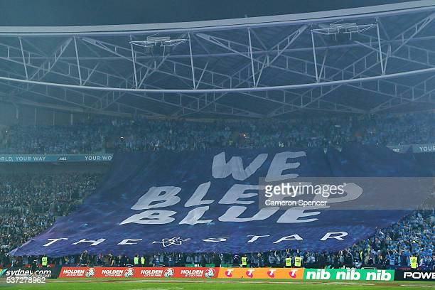 Blues fans show their support during game one of the State Of Origin series between the New South Wales Blues and the Queensland Maroons at ANZ...