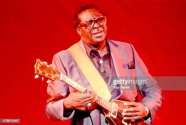 Blues musician Albert King performs onstage Chicago Illinois June 6 1986