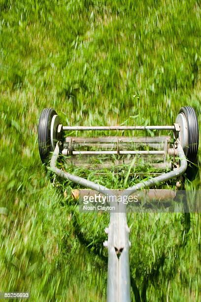 Blur detail of manual lawn mower cutting grass