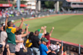 Blurred photo of fans cheering during cricket match