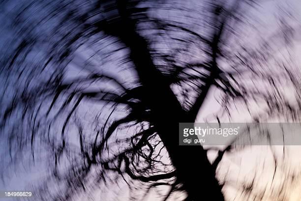 Wirbelnde Tree