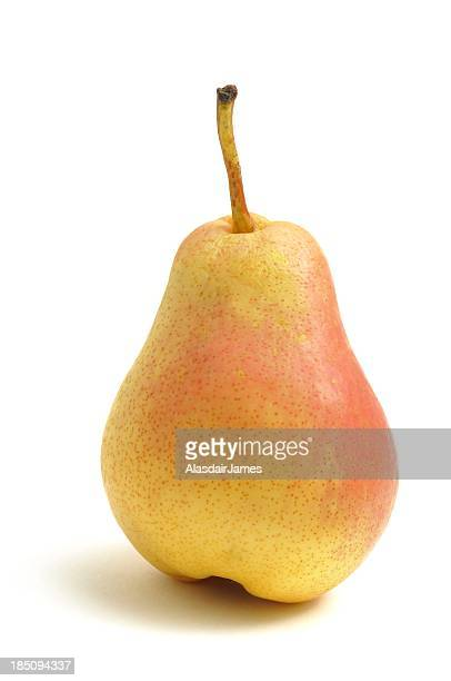 Blush Pear portrait