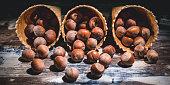 Banner. Hazelnut nuts in waffle cones on a dark background. Low key lighting.