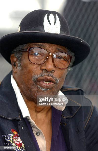 Bo Diddley during Little Steven's Underground Garage Festival Presented by Dunkin' Donuts Show August 14 2004 at Randall's Island in New York City...