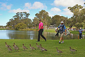 Bo Van Pelt of the USA and Jason Dufner walk past ducks as they walk the 8th hole during day four of the Perth International at Lake Karrinyup...