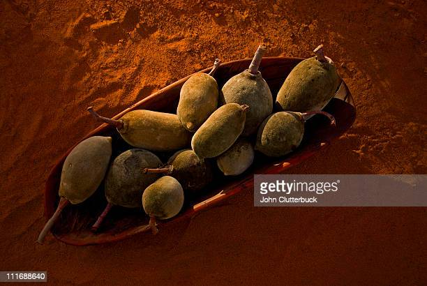 Boab Pods, Coolamon, Red earth.