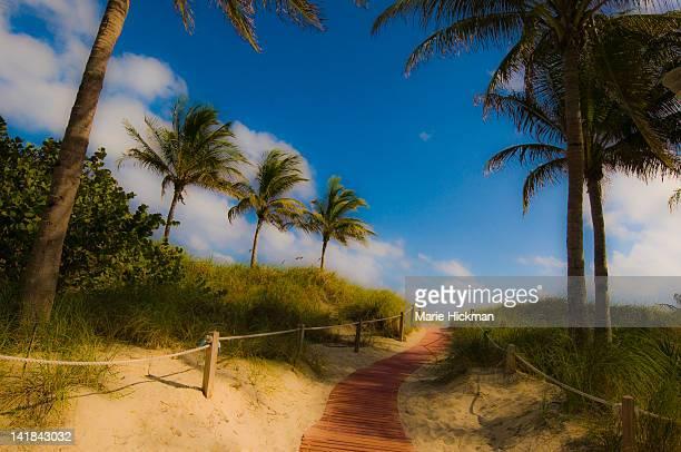 Board walk going to South Beach, Miam