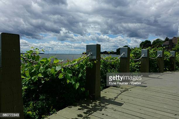 Boardwalk By Plants Against Cloudy Sky