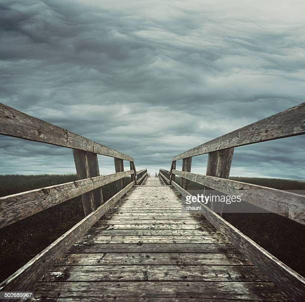 Boardwalk in the Clouds