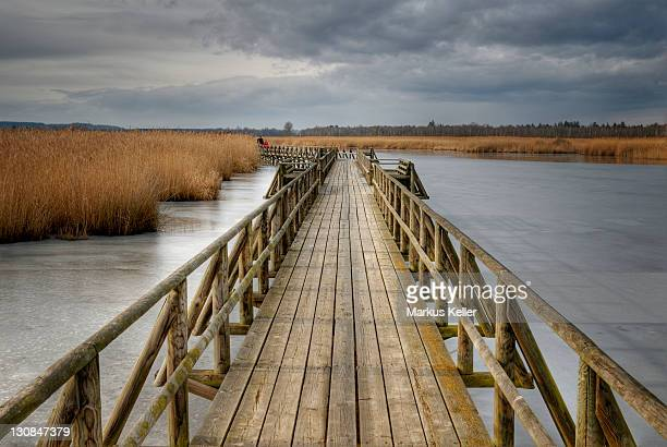 Boardwalk on the lake Federsee - Upper Swabia, Baden Wuertemberg, Germany Europe.