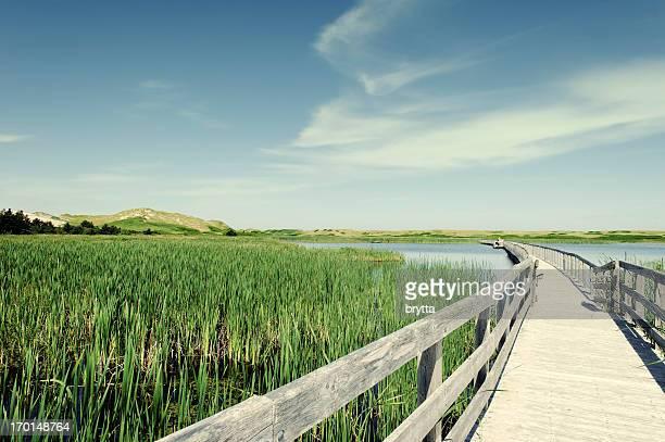 Boardwalk over Bowley Pond, Prince Edward Island National Park,Canada